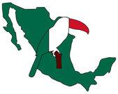 Toucan Mexico — Stock Photo