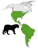 Jaguar dağıtım — Stok fotoğraf