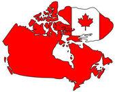 Bullfrog Canada — Stock Photo