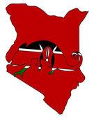 Kenya Chameleon — Stock Photo