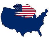 Bullfrog USA — Stock Photo