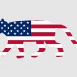 Cougar USA — Stock Photo