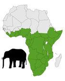 African elephant range — Stock Photo