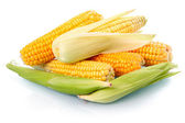 Fresh corn vegetable with green leaves isolated — Stock Photo