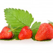 Red strawberry fruits with green leaves — Stock Photo