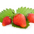 Red strawberry fruits with green leaves — Stock Photo #4962165