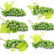 Set of grape fruits with green leaves isolated — Stock Photo