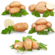 Set of ripe potatoes vegetable with green leafs isolated — Stock Photo #4962262