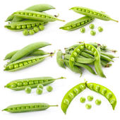 Set of ripe green pea in the pod isolated — Stock Photo