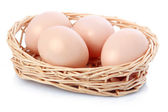 Raw eggs in basket isolated on white — Stock Photo