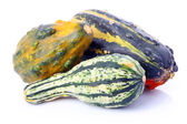 成熟的装饰瓜类蔬菜 — 图库照片