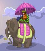 King style elephant ride — Stock Photo