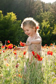 Little girl on the poppy field — Stock Photo
