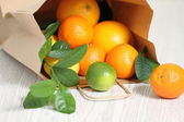 Fresh citrus fruits in the package — Stock Photo