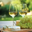 Various sorts of cheese and white wine — Stock Photo