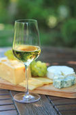 Various sorts of cheese, grapes and white wine — Photo