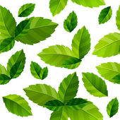 Seamless background mint leaves — Vector de stock