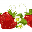 Seamless border with strawberries — Stock Vector #4506368