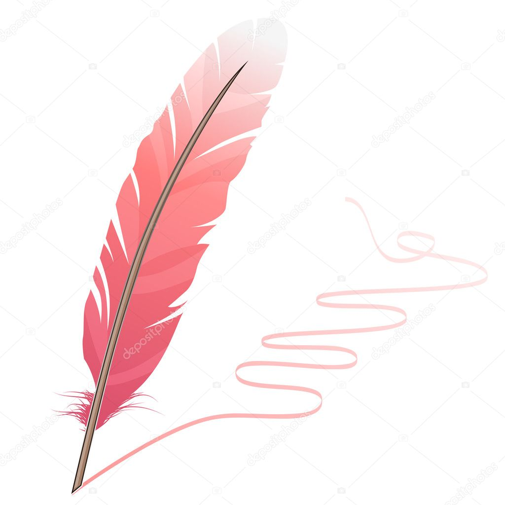 Pink feather and flourish isolated on white background — Stock Vector #4672973
