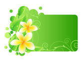 Frame with green leaves and frangipani — Stock Vector