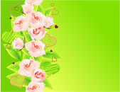 Green background with roses — Stock Vector