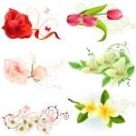 çiçek tasarım öğeleri — Stok Vektör