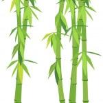 Green bamboo — Stock Vector #5125274