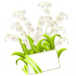 Bunch of lilies of the valley — Stock Vector