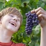 üzüm ile çocuk — Stok fotoğraf