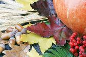 Autumn still life — Stock Photo