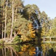 Autumn forest and lake — Stock Photo #4020648