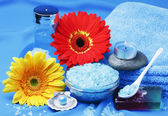 Products for the spa and aromatherapy — Stock Photo