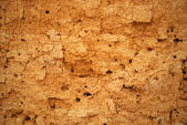 Abstract background in the form of the cracked clay wall — Stock Photo