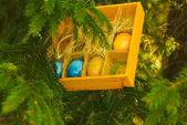 Easter set — Stock Photo