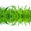 Stock Photo: Grass desire
