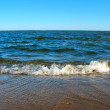 Seashore - Stock Photo