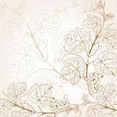 Ilustración de vector vintage con rama de uva — Vector de stock