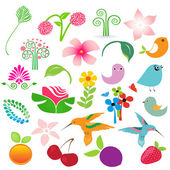 Big vector elements set. Birds, fruits and flowers for your design — Stock Vector