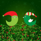 Birds couple on the holly berry branch. Holiday greetings card — Stock Vector
