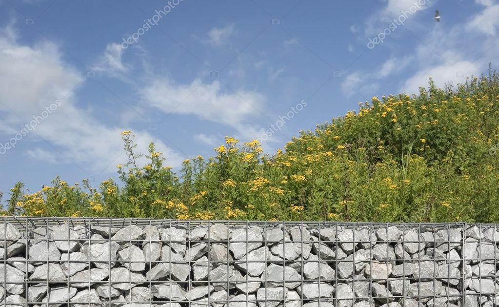 Hill covered with meadow plants, and stone wall — Stock Photo #4468260