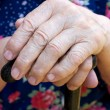 hands of the old woman — Stock Photo