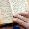 The old woman reads the bible - Stock Photo