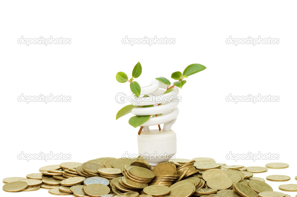 Energy saving lamp with green seedling on white  — Stock Photo #4022141