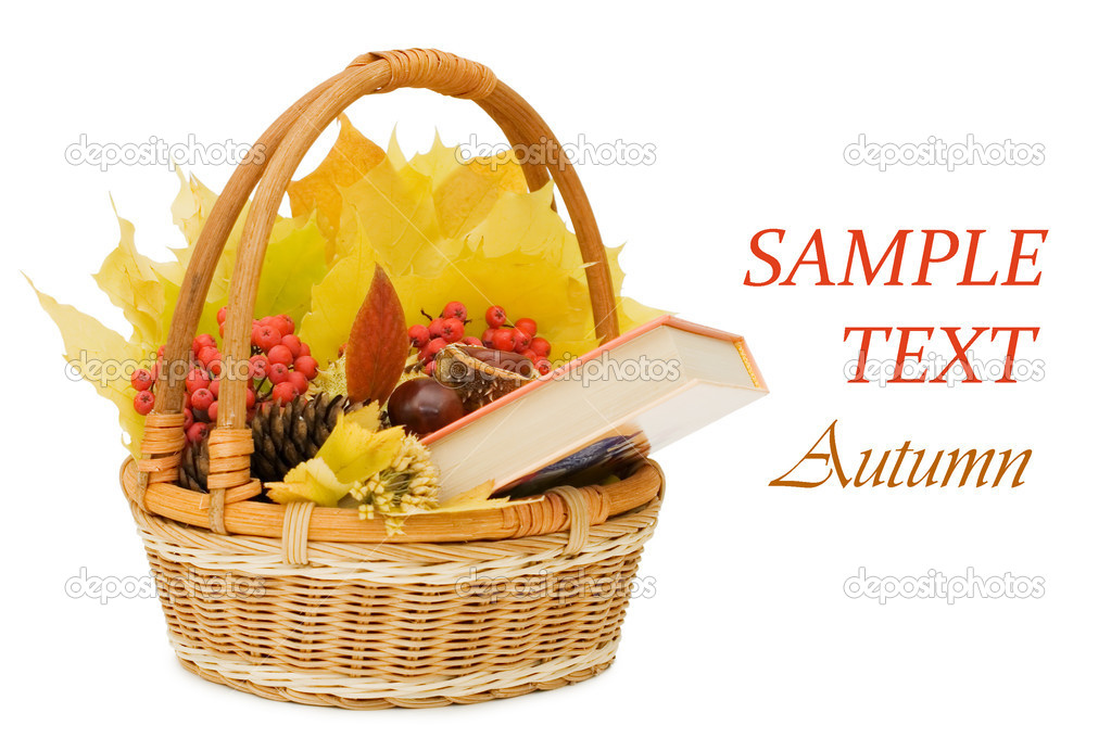 Autumn leaves and fruits isolated on white background   Stock Photo #4120222