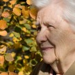 Beautiful portrait of an elder woman outdoors - Stockfoto