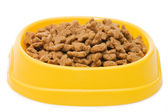 Pet Food Bowl Isolated White on Background — Stock Photo