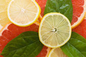 Fresh juicy grapefruits with green leafs — Stock Photo