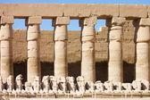 Statues de l'ancien temple. luxor. égypte — Photo