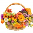 Beautiful flowers in a basket isolated on white — Stock fotografie
