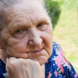 Portrait of old woman — Stock Photo #4678916